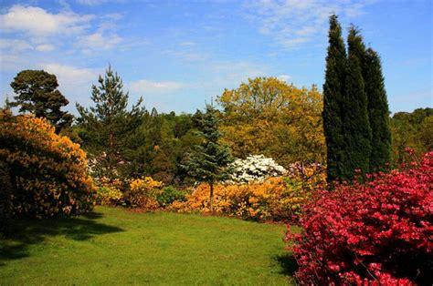 el corte ingles terraza y jardin | facilisimo.com