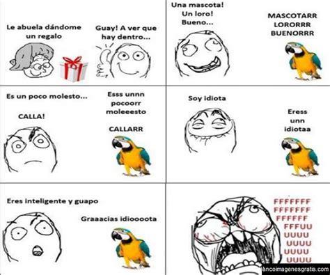 El loro Memes para Facebook   Banco de Imagenes y Portadas ...