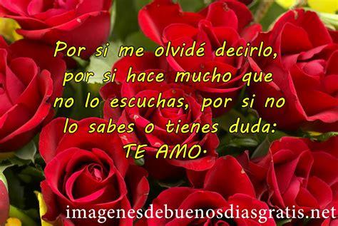 Encantadoras rosas rojas de amor | Imagenes De Buenos Dias ...