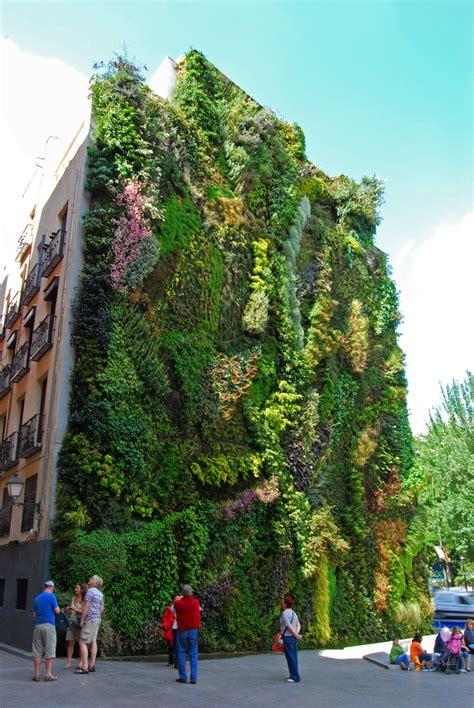 ESTO PASA EN PLASENCIA: Los jardines colgantes de ...