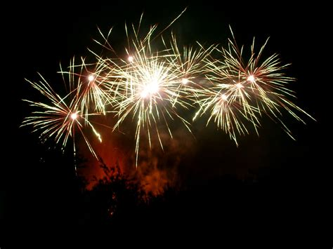 Fireworks Animation Related Keywords   Fireworks Animation ...