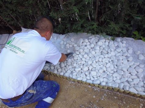Foto: Piedra de Grava Blanca Seleccionada de Moderngarden ...