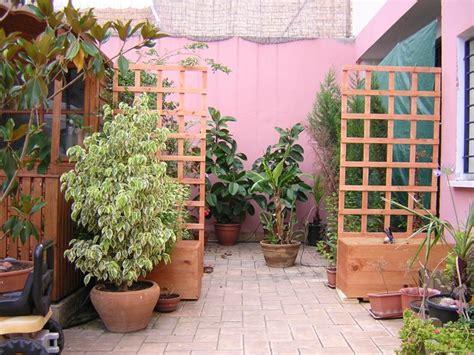 Foto terraza con plantas  10 11 2008 14:40:33    fotos de ...