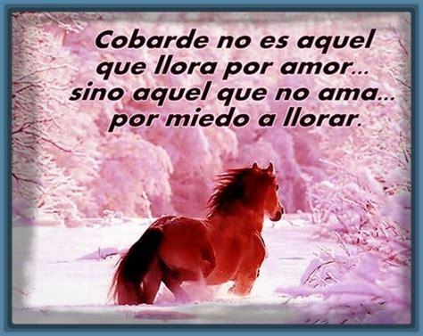 Fotos con Frases Bonita de Amor y Amistad con Cariño ...