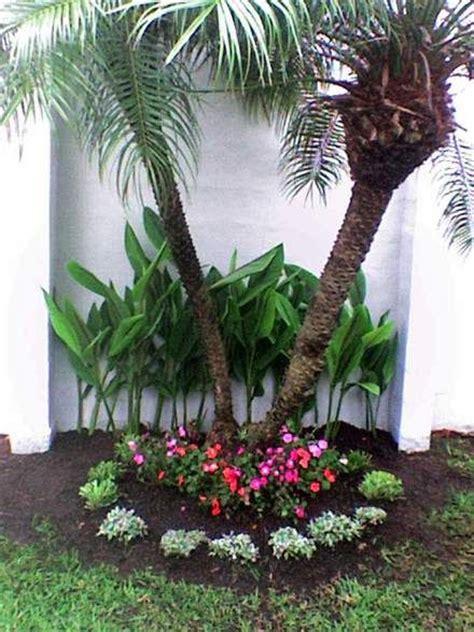 fotos de jardines de nicaragua   Buscar con Google ...