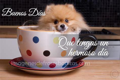 Frases Bonitas Imagenes De Buenos Días | Imagenes De ...