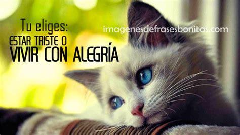Frases Imagenes Bonitas Para Compartir | Imagenes De ...