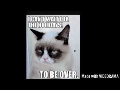 Funny grumpy cat memes.   YouTube