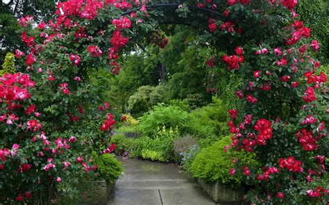 Garden Full HD Wallpaper and Background Image   1920x1200 ...