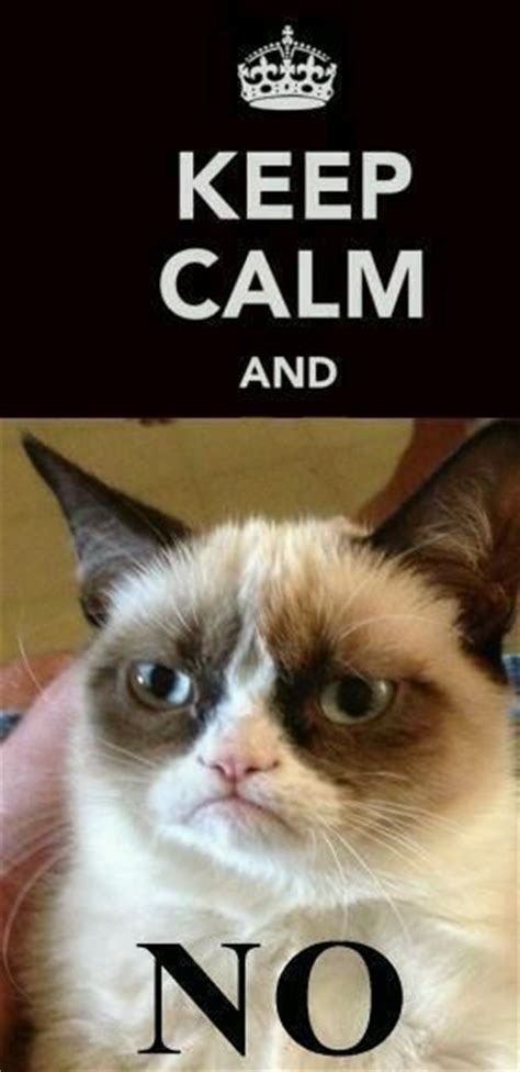 Girl On Fire Grumpy Cat | grumpy cat #tartar sauce #tard ...