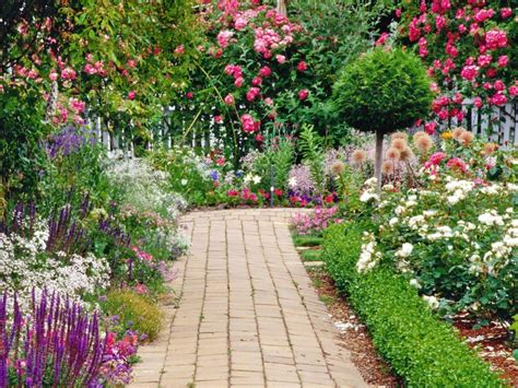 Growing the Best Flowers in Town | Landscaping   Gardening ...