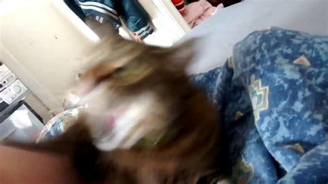 Grumpy Cat 2   YouTube