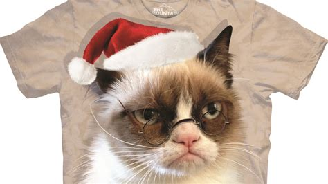 Grumpy Cat Christmas Hat | Amazing Wallpapers