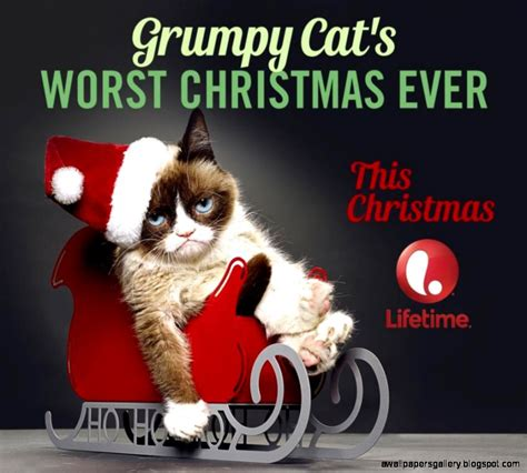Grumpy Cat Christmas Wallpaper | Wallpapers Gallery