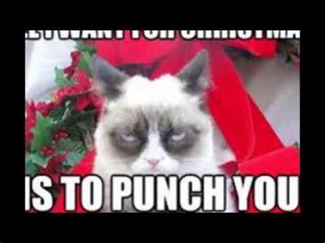 Grumpy Cat Christmas   YouTube