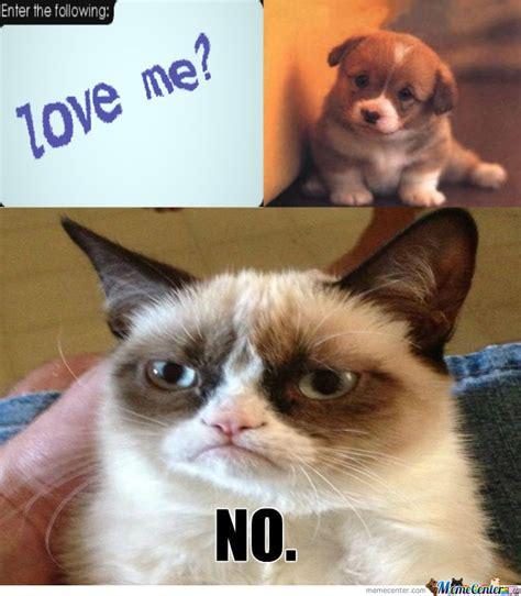 Grumpy Cat Does nt Love You by dojan   Meme Center
