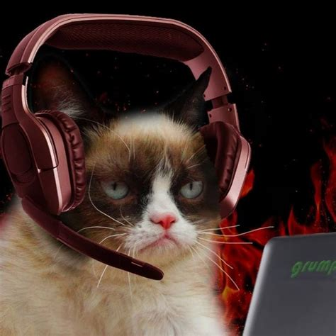 Grumpy Cat Gamer   YouTube