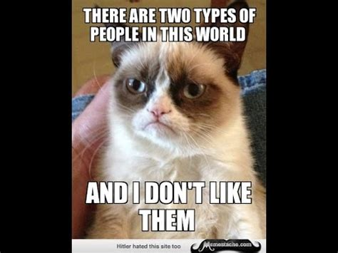 Grumpy Cat Meme   YouTube