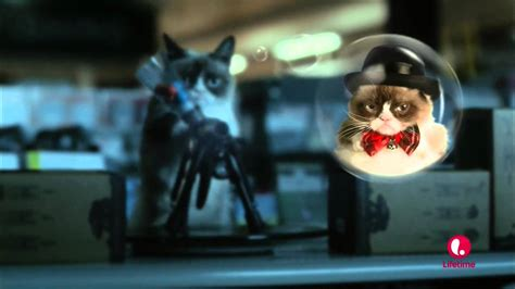 Grumpy Cat Movie   Paintball Scene   YouTube