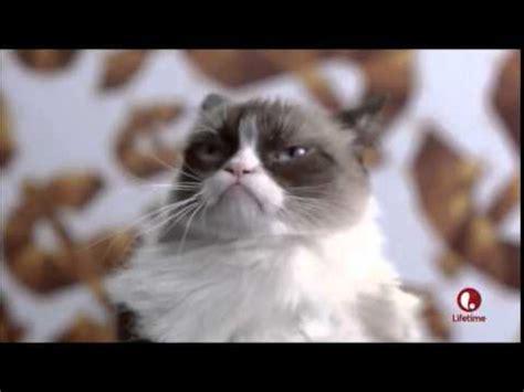 Grumpy Cat s Christmas Dance   YouTube