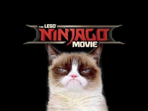 Grumpy Cat s Deleted LEGO NINJAGO Movie Scene #1   YouTube