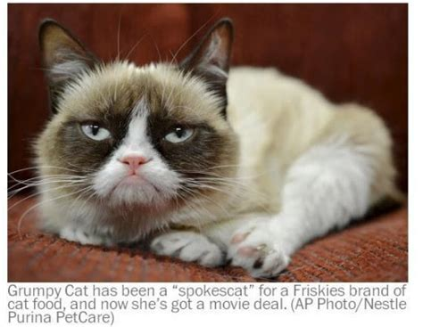 Grumpy Cat – Free Patterns and Tutorial Videos | JAQUO ...