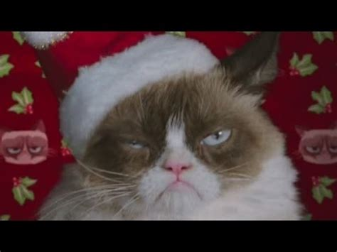 Grumpy Cat starring in Christmas movie   YouTube