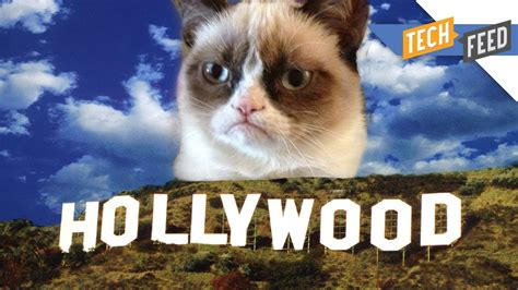 Grumpy Cat: The Movie!   YouTube
