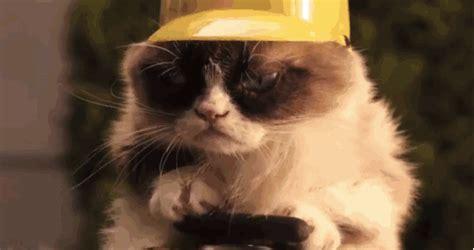 Grumpy Cat's Christmas movie Trailer!  video  | Sam Proof