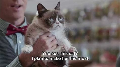 Grumpy Cat's Miesestes Weihnachtsfest Ever   Worst ...