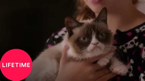 Grumpy Cat's Worst Christmas Ever   YouTube
