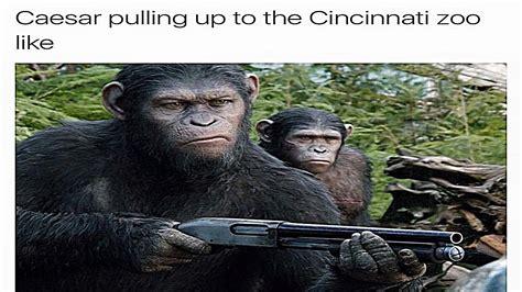 Harambe The Gorilla Dank Meme Compilation   YouTube