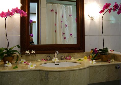 Have a More Creative Bathroom   Simple Bathroom Decor Ideas