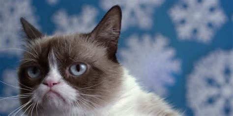 Here s the grouchy trailer for  Grumpy Cat s Worst ...