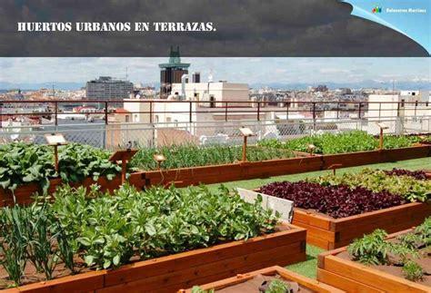 Huertos urbanos en terrazas.   Piedra artificial ...