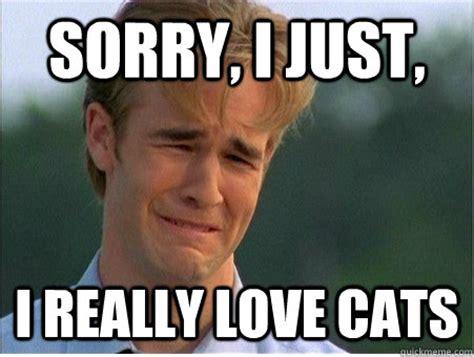 i love cats meme Gallery