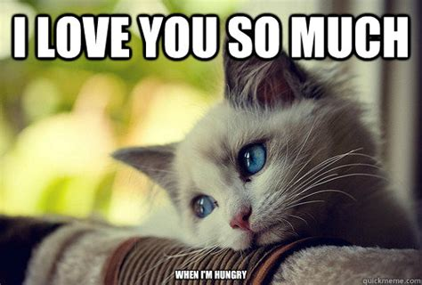 i love you cat meme