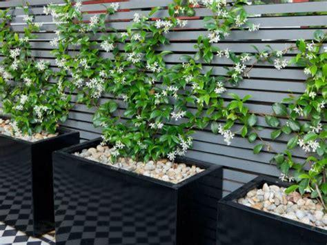 Ideas para decorar jardines pequeños y modernos ...