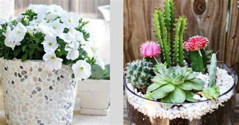 ideas para jardines pequenos | facilisimo.com