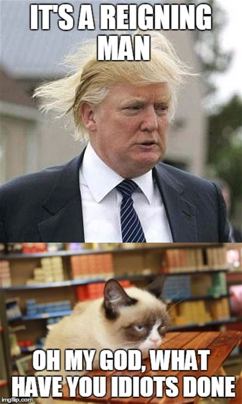 Image tagged in memes,grumpy cat,trump,song lyrics,grumpy ...