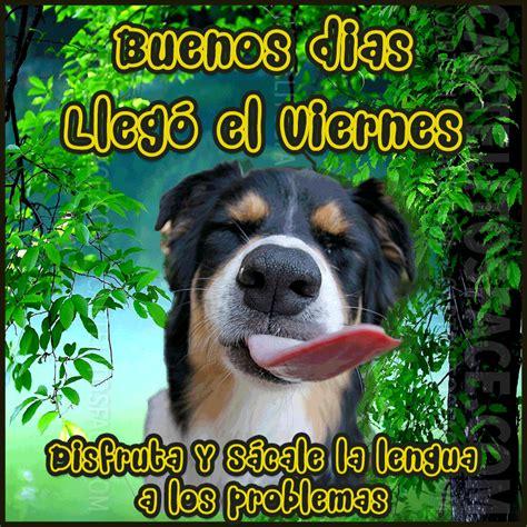 Imagenes Animadas De perros Llego el Viernes Para Whatsapp ...