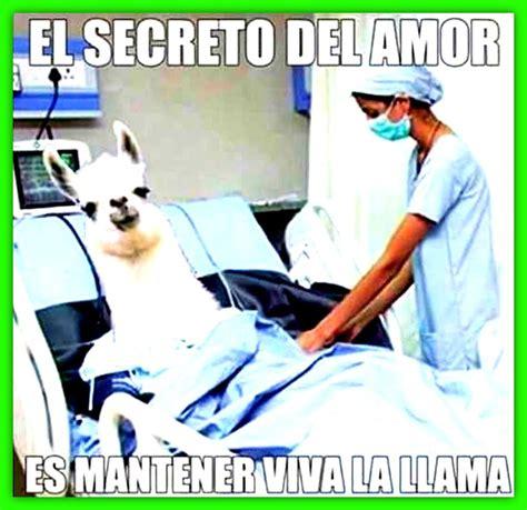 Imagenes Chistosas Para Hacer Reir A Un Amigo | Imagenes ...