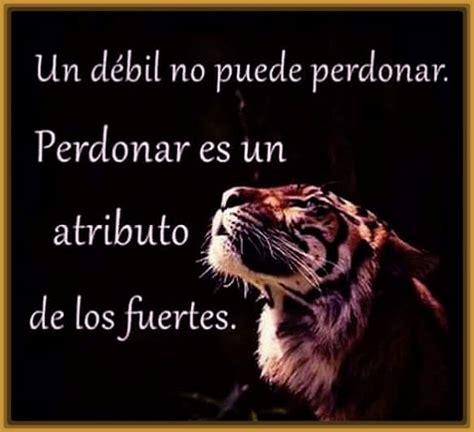 Imagenes con Frases de Tigres Bonitas | Fotos de Tigres