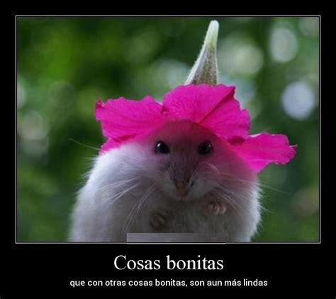 Imagenes Cosas Bonitas | Imagenes Bonitas Para Dedicar