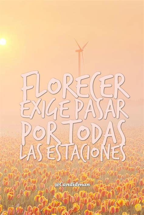 Imágenes de flores con frases y reflexiones de la vida ...