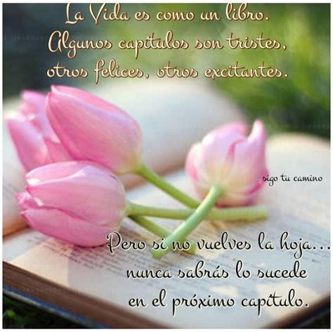 Imágenes De Flores Con Pensamientos Positivos Para ...