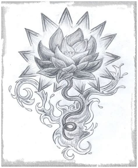 Imagenes De Flores Para Dibujar A Lapiz y Color   Dibujos ...