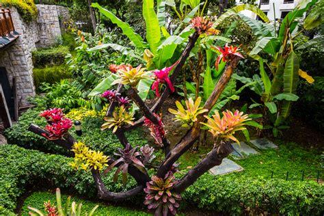 Imagenes De Jardines. Imagenes De Jardines. Imagen Fuente ...
