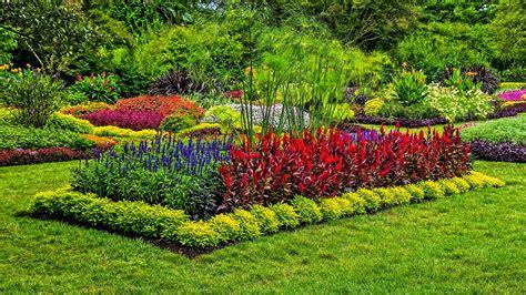 Imágenes de Jardines muy Coloridos | Fotos e Imágenes en ...