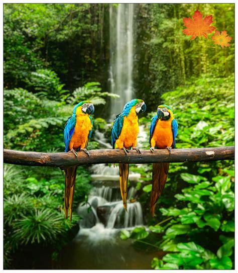 Imágenes De Paisajes Naturales Hermosos   imagenes para ...